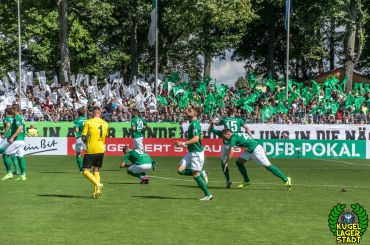 FC Schweinfurt 05 - SV Sandhausen (42)