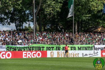 FC Schweinfurt 05 - SV Sandhausen (59)