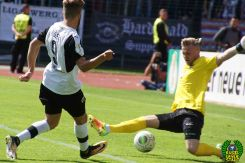 FC Schweinfurt 05 - SV Sandhausen (88)