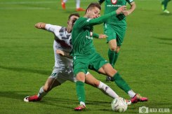FC Schweinfurt 05 - SV Schalding-Heining (19)