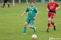 SpVgg Hambach - FC Röthlein-Schwebheim (62)
