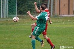 SpVgg Hambach - FC Röthlein-Schwebheim (84)