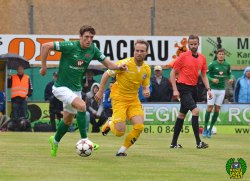 FC Pipinsried - FC Schweinfurt 05 (1)