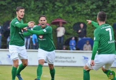 FC Pipinsried - FC Schweinfurt 05 (6)