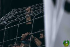 FC Schweinfurt 05 - Eintracht Frankfurt (47)