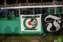 FC Schweinfurt 05 - Eintracht Frankfurt (5)