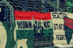 FC Schweinfurt - FC Pipinsried (6)