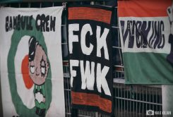 FC Schweinfurt 05 - FC Bayern München II (8)