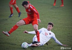 FC Schweinfurt 05 - TSV 1860 Rosenheim (15)
