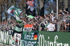 FC Schweinfurt 05 verliert 1-3 gegen den TSV 1860 München (285)