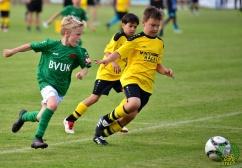 FC_Schweinfurt05_U10_spielt_gegen_den_FC-Liverpool (25)