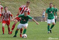 FC-Schweinfurt-05_mit_Unentschieden_im_Testspiel_gegen_den_FC-Fuchsstadt (31)